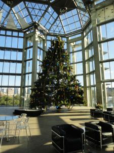 The Christmas Tree in the great Hall of the National Gallery of Canada in Ottawa.
