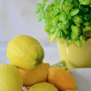 Sgroppino al Limone © www.ice-cream-magazine.com