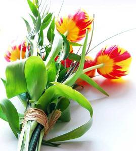 flower-bouquet_009