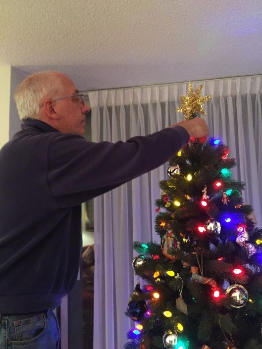 laurent star tree 2015