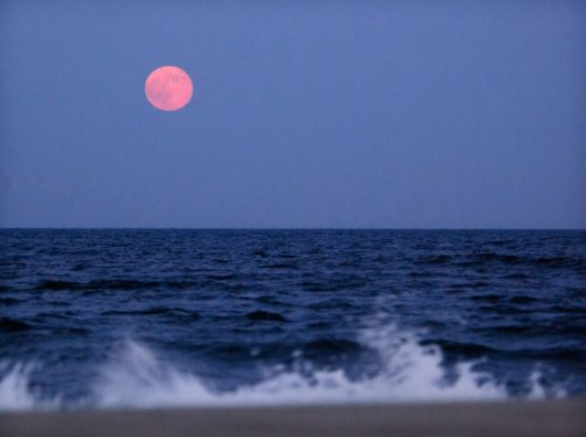 Strawberry-Moon-e1466453528418.jpg