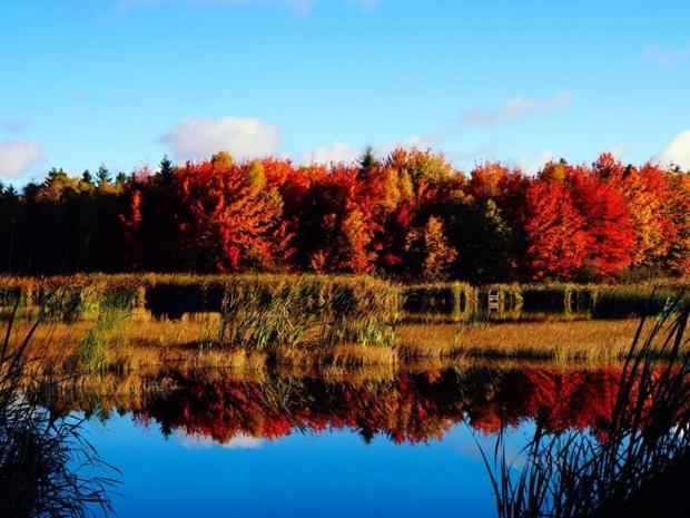 fall-tignish.jpg