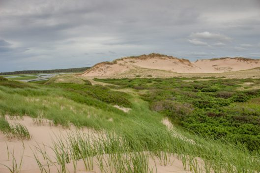 Canada-PEI-Greenwich-Dunes-Trail-15-1024x683.jpg