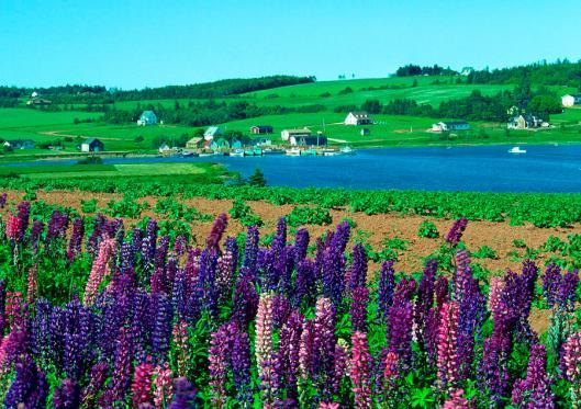 french-river-prince-edward-island-gary-corbett.jpg