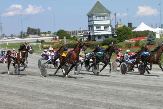 red-shores-racetrack.jpg